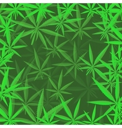 Green cannabis leaves background vector