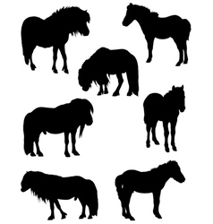Collection of silhouettes of horses vector image vector image