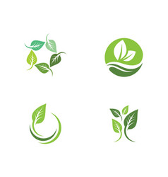 tree leaf ecology nature icon vector image