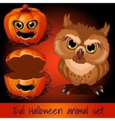 Open pumpkin and evil owl on a red background vector