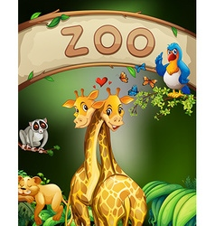 Zoo sign and many animals vector image