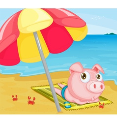 Pig at the beach vector image