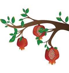 Tree branch with pomegranates vector
