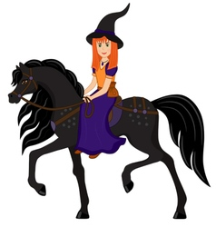 Witch on a black horse vector