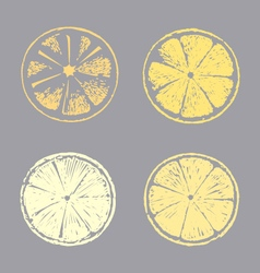 Abstract lemon slice Sketch hand drawn vector image vector image
