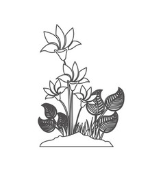 Grayscale contour with plant with flowers vector