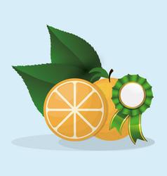 Orange natural product premium quality vector