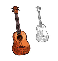 sketch acoustic guitar musical instrument vector image vector image