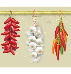 Strings of garlic and red peppers vector