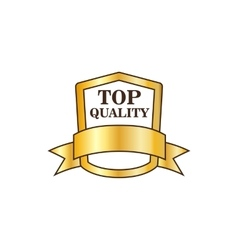 Top quality golden shield icon flat style vector image