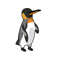 emperor penguin bird nature marine animal vector image