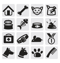 dogs and cats set vector image vector image