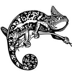 Chameleon black white vector
