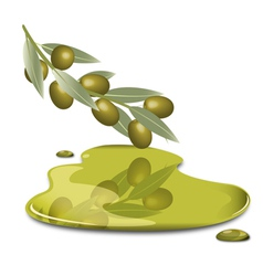 Olive butter vector