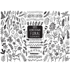 Hand drawn vintage floral elements vector