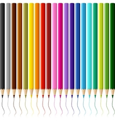Collection of colored pencils on white background vector image