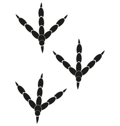 Imprint of the trace of the bird vector