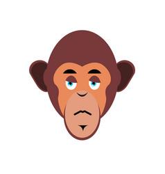 Monkey sad emoji marmoset unhappy emotion vector