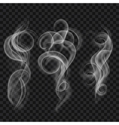 Translucent gray smoke vector image vector image
