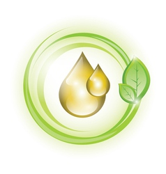 Golden yellow oil droplets in green circles vector
