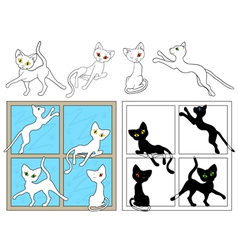 Black and white cats on the windows vector image vector image