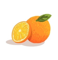 Fresh full garden orange with leaf and orange vector