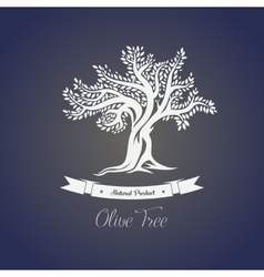 Isolated greece olive oil tree with branches vector image