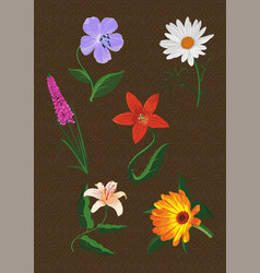 Some several different flowers vector