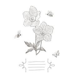 vintage botanical blossom flower with vector image