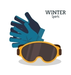 Winter sport glasses and gloves protection vector
