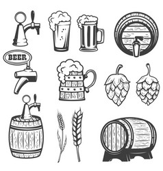 Beer mugs wooden barrels hop wheat isolated on vector