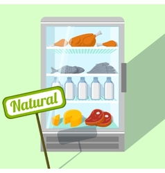 Natural foods in refrigerator vector image