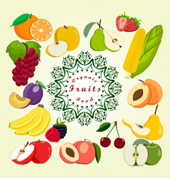 The fruit vector