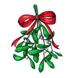 Mistletoe with red bow christmas decor plant vector
