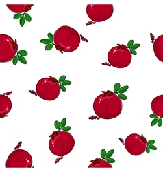 Seamless pattern of pomegranate vector