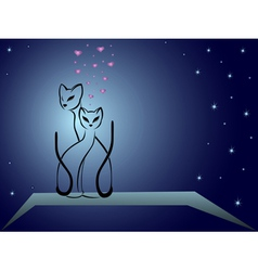 Enamoured cats against dark blue night sky vector image vector image