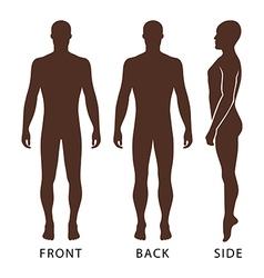 Fashion bald man full length template figure vector image