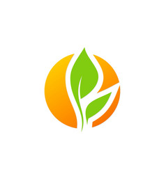 green leaf ecology abstract logo vector image