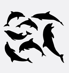 Dolphin animal silhouette vector