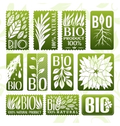 Natural and bio product labels badge and stikers vector