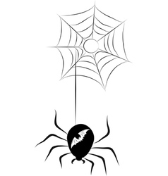 Spider and a Web vector image