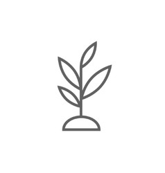 Sprout line icon vector
