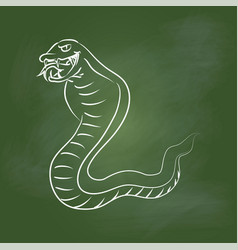 hand drawing snake on green board - vector image vector image
