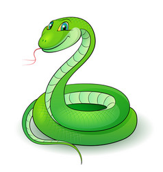 Cartoon of a nice green snake vector