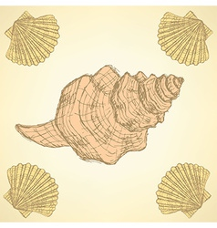 Sketch sea shells in vintage style vector
