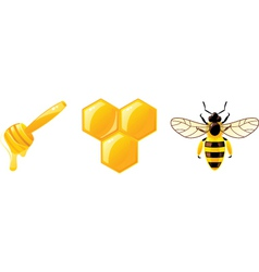 honey icons vector image vector image
