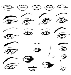Human eyes lips eyebrows and noses vector
