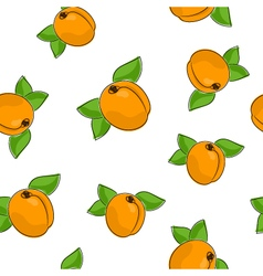 Seamless pattern of apricot vector