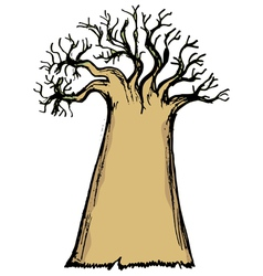baobab vector image vector image