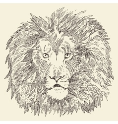 Lion head ethnic style drawn sketch vector image